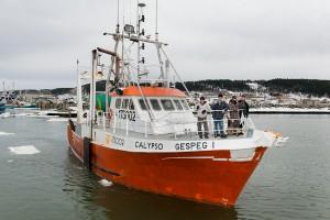Calypso_DSC4044
